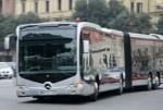 filobus.jpg